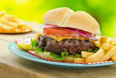 Cheeseburger and Fries Stock Photo